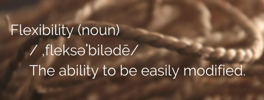 "Image explaining the meaning of the noun ""flexibility"""